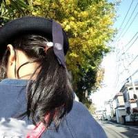 紅葉の季節(ようやく)