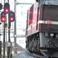 レトロ日光号(1)/小雨降る宮原を上る回送列車