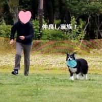 6/18 JFAクラブ仙台 多賀城大会