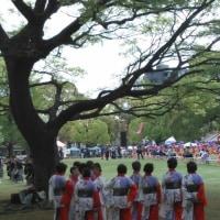 富士市中央公園にて
