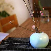 冬の秋刀魚と梅の花