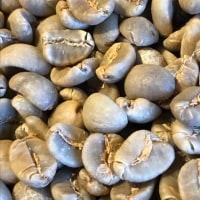 深煎りの豆と浅煎りの豆を研究中