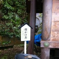 SCOOBIE DO @福井CHOP!