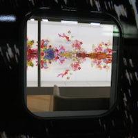 今日見た新幹線… ふたつが面白くて… ^_^