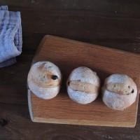 白神酵母 クルミレーズンパン