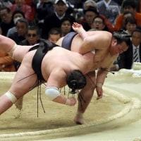 稀勢の里関 優勝おめでとう!