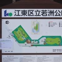 東京日和(東京ゲートブリッジ)