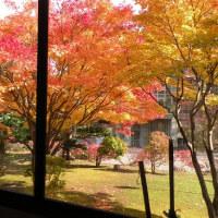 彩り増す小樽市公会堂