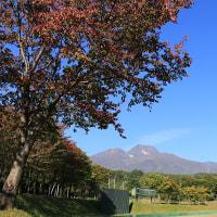 妙高山秋景