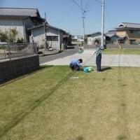今日の芝生状況は 04月23日♪