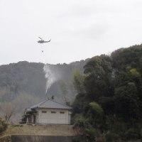大規模な林野火災訓練
