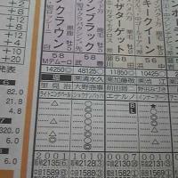 続・宝塚記念のサインは、北、金、ロケット、そして「そっちかい!」