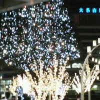 気分はクリスマス☆