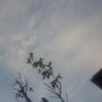 仙台の空12月4日