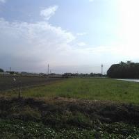 THE・農
