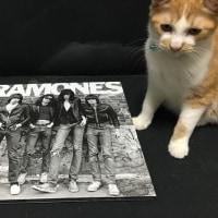 RAMONES/40TH ANNIVERSAY EDITION