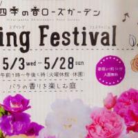 四季の香ローズガーデン Spring Festival