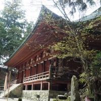 京都一周トレイル 延暦寺まで来たぞ編