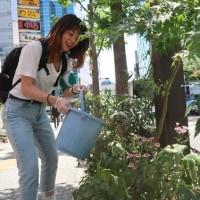 ●5/23 環境の緑化と美化報告 最終ヒマワリ種まき