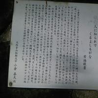 逢坂山のさねかづら 藤原定方
