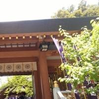 東京のお伊勢さま「東京大神宮」へ!