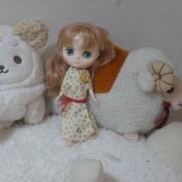 ティアラちゃんと羊たち(メリー&キュート☆と一緒に)