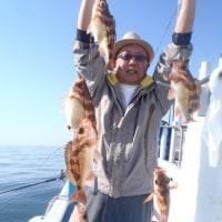4月16日(日)オキメバル五目の釣果