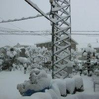 今季一番の積雪