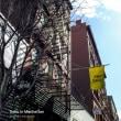 私が行った一番良い時のNY(ニューヨーク)Part2