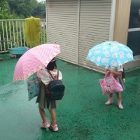 朝から雨です!!
