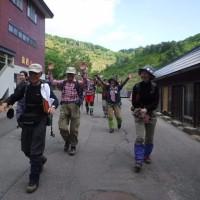 ふれあい登山②「満開のイワカガミの群落・焼山縦走登山」開催しました!