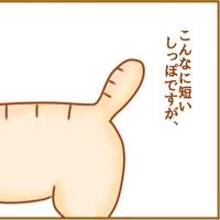 しっぽ。(四コマ)