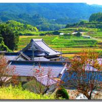 秋深まりゆく奈良の里山を歩く