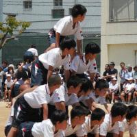 恵、小学校最後の運動会