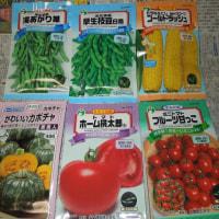 トマトなどの種購入       いよいよ種まき!!