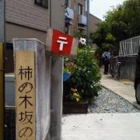 柿の木坂の家で手作りのコンサート