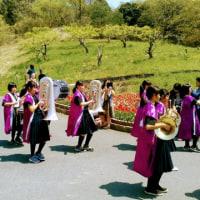 春の丘コンサート!in ハーベストの丘