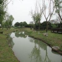 蘇州 月季園