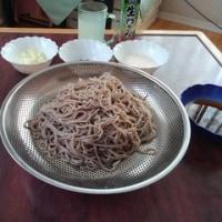 最近の麺事情