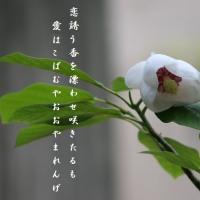 五月の香り