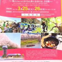 淀川三川春フェスタ2017でフラ