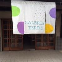 galerie terre 2014 夏の店