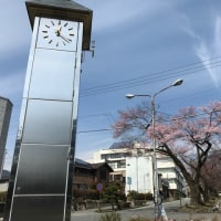 桜が咲いて、加川良を。