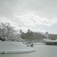 雪の彦根城