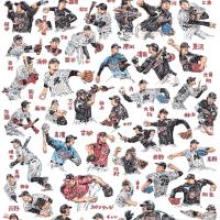 『プロ野球画報2016』