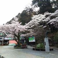 高尾山(その1)