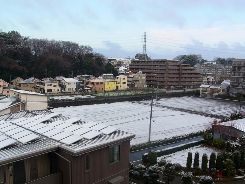 02月25日 雪景色
