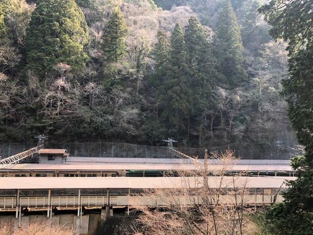 京大坂道の画像 p1_4