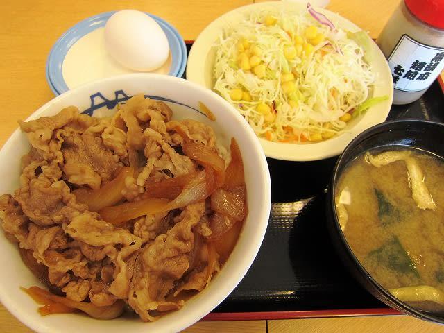 プレミアム牛めし(並)+生野菜セット