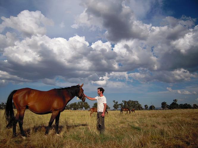 ファームステイの写真 馬とバックパッカー